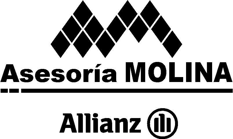 C ASESORIA MOLINA